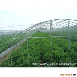 无锡曙明钢架大棚 坚固耐用农用温室大棚