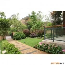院子草坪最适合用什么草?
