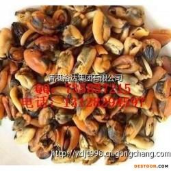 供应干鲜制品 淡菜干 紫菜干 干海带 批发报价
