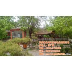 金凤岭(图)、绿色旅游生态园、潍坊生态园