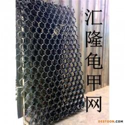 专业生产龟甲网