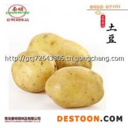 蔬菜批发 优质荷兰土豆 春秋季土豆 山东青岛胶州 出口级证件全