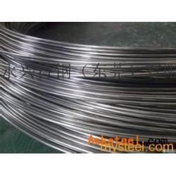 深圳310S不銹鋼軟線(品質優良)圖片