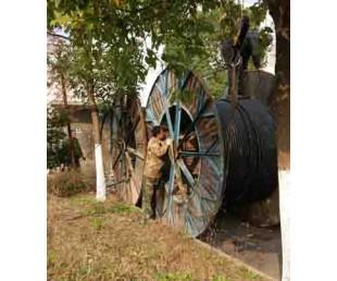 溧阳品牌电缆线回收公司