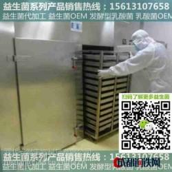 【一然生物】乳酸菌OEM|七台河|进口菌种作用|大量供应