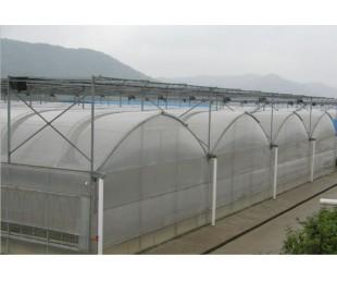 批发定做阳光板温室|智能玻璃|承揽温室薄膜工程