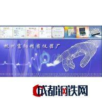 浙江富阳精密仪表厂