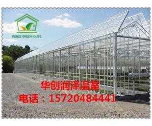 单体温室 大棚骨架蔬菜大棚养殖大棚骨架园艺花卉大棚