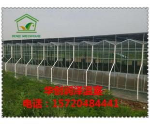 温室大棚 玻璃温室 蔬菜大棚 大棚温室 品质保证
