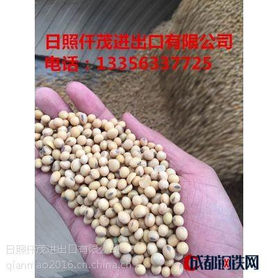 進口大豆從哪里購買 怎么購買進口大豆