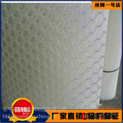 廣西沙發墊用網廠商 安徽塑料防滑腳墊網價格 小孔育雛網報價
