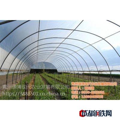 温室工程,智能温室工程建设新昌晟物产,温室工程售后服务