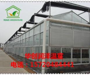 节能日光温室大棚 暖棚厂家定制 蔬菜大棚安装设计制作