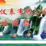 宁波水表有限公司