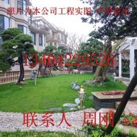 亚虎娱乐_苏州高档别墅庭院设计、豪宅别墅景观设计、高端庭院景观绿化工程