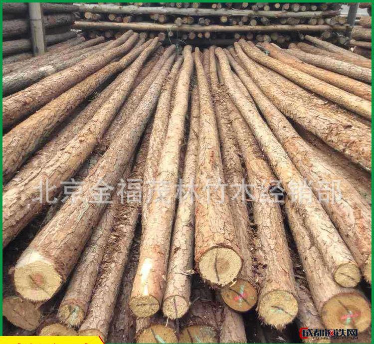 直销园林绿化杆 园林绿化杆 园林场杉木桩