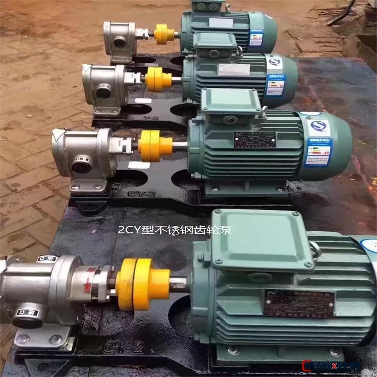 永盛耐腐蚀不锈钢齿轮泵 不锈钢齿轮泵 耐腐蚀齿轮泵 耐腐蚀不锈钢齿轮泵图片
