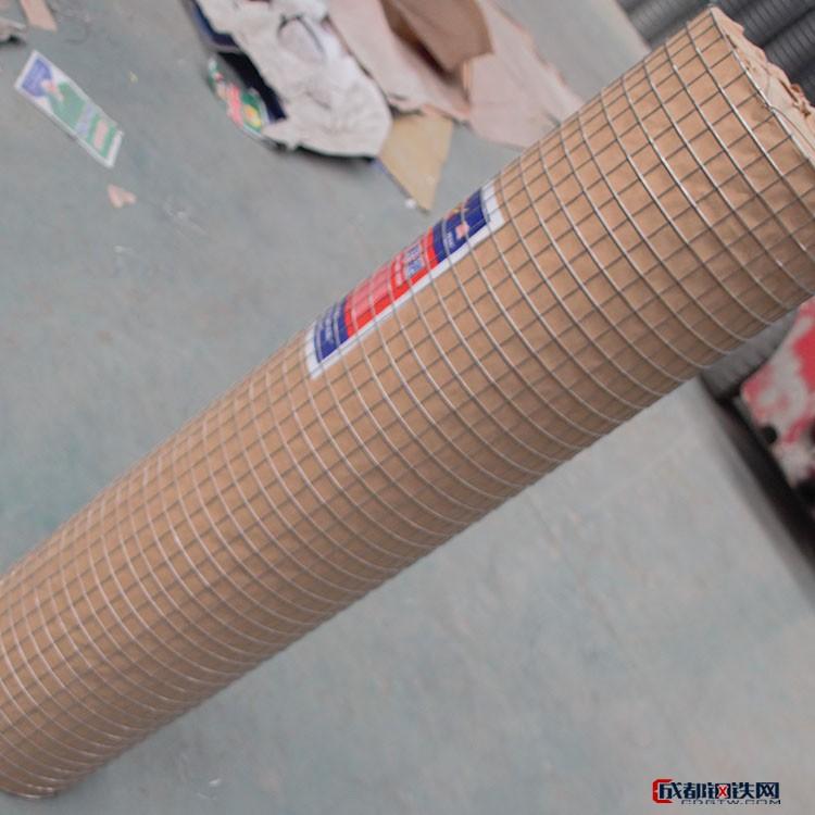 現貨供應 不銹鋼電焊網 電焊冷鍍電焊網 電焊網卷 熱鍍鋅電焊網圖片